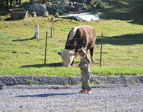 Teach Them Young EJ and Cow